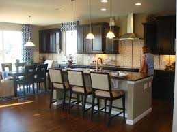 Painting Kitchen Cabinets Espresso Kitchen Cabinets White Jelly Cabinets Acrylic Drawer Pulls And
