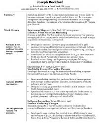 Best Sample Resume  best font for a resume  example good resume     a resume cover letter   ipnodns ru Breakupus Fascinating Sample Marketing Director Resume Best Sample