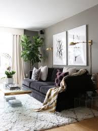 living room ideas for apartment fionaandersenphotography com