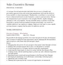 Executive Resume Samples   Ersum net Dayjob