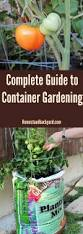 Vertical Garden Vegetables by Best 25 Container Gardening Ideas On Pinterest Growing