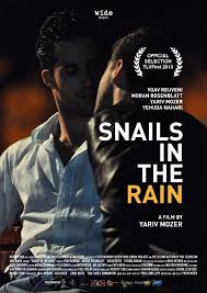 snails-in-the-rain