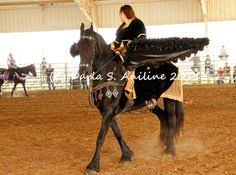Wings Halloween Costume Large Black Feather Wings Built Horse Wear