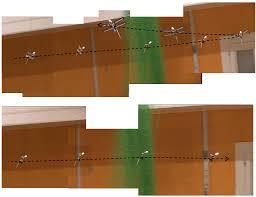 Robotic Wall Robotics Free Full Text Aerodynamic Bio Mimetics Of Gliding