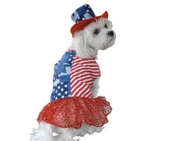 Patriotic Halloween Costumes Proud Pups U2013 8 Patriotic Pet Costumes