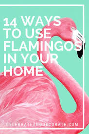 Home Decor Birds by Best 25 Flamingo Decor Ideas Only On Pinterest Flamingos