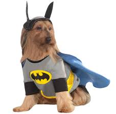 The Tick Costume Halloween by Dog Costumes Dog Halloween Costumes Entirely Pets