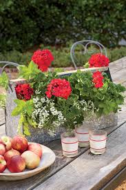 What Is Flower Food by Spectacular Container Gardening Ideas Southern Living