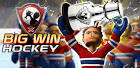 picture of Big Win Hockey 2013 Hack Tool Cheat Trainer FREE images wallpaper
