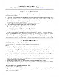 Sample Resume For Senior Manager by Resumes External Auditor Daily Resume Criminal Justice Law