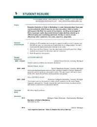 Standard Resume Template  standard resume template by vcl