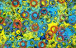 The Images of Fractals Summer (season) Colors Apophysis Color ...