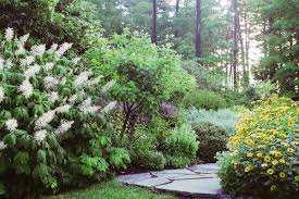 garden design garden design with sunny corner bed with ideas for