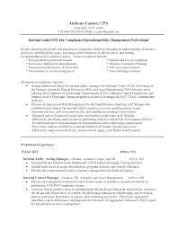 Sample Resume For Senior Manager by Senior Director Resume
