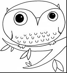 remarkable cute owl coloring pages with coloring pages owls