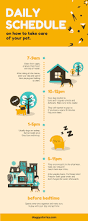 Livingroom Photos by Free Online Infographic Maker By Canva