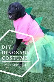 Winnie Pooh Dog Halloween Costume 78 Costume Dress Images