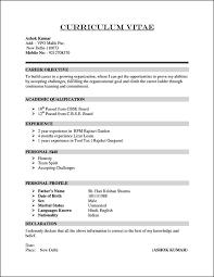 Example For Resume by Best 25 Career Objective In Cv Ideas On Pinterest Resume Career