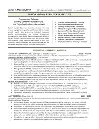 Resume  Senior Position in the Financial Services Industry
