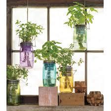 mason jar indoor herb garden grow your own herbs uncommongoods
