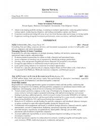 It Analyst Resume  patient advocate resume example  equity       financial analyst