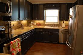 Professional Spray Painting Kitchen Cabinets Painting Kitchen Cabinets Painting Kitchen Cabinets A Dark Color