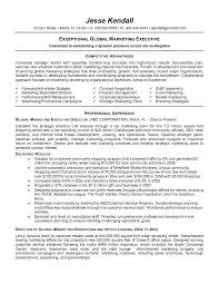 Summary Sample Resume by Example Executive Resume Executive Summary Resume Example High