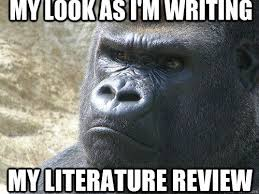 images about Doctoral Student on Pinterest Pinterest my look as im writing my literature review   Grumpy Gorilla