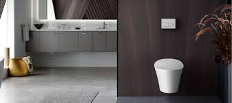 Kohler Toilet Seat Replacement Parts Comfort Height 17