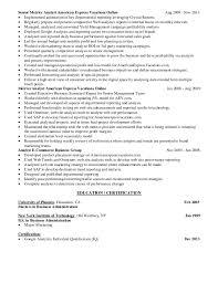 Google Resume Examples by Neil Shapiro Resume Digital Marketing Google Analytics Expert