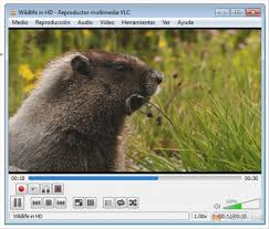Media Player 2.0.6,2013 images?q=tbn:ANd9GcR