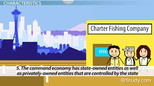 what is a mixed economy definition characteristics u0026 examples
