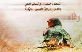 وصفات الدجاج    Images?q=tbn:ANd9GcRYd7LbYYUhV_InZqVHhdQKX8iNNPK0ZAb75cY4Hho8aipx1yIw6g