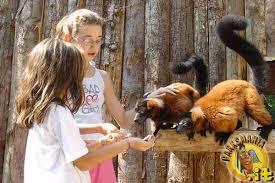 ANCONA parco zoo falconara