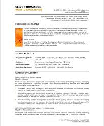Profile Section Of Resume Examples by Web Developer Free Resume Samples Blue Sky Resumes