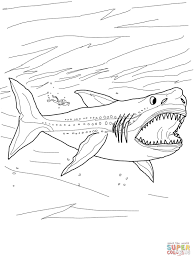 megalodon shark coloring page free printable coloring pages