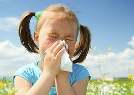 Image result for seasonal allergies school image