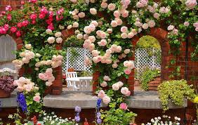 roses garden wallpaper android apps on google play