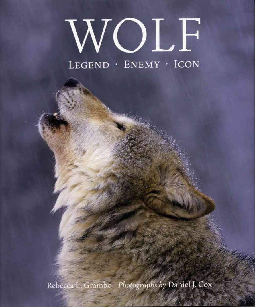 Image result for Wolf: Legend, Enemy, Icon
