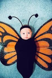 Baby Carrier Halloween Costumes 25 Newborn Halloween Costumes Ideas Diy