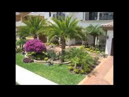 florida landscaping ideas youtube