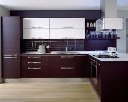 Narrow Kitchen Storage Cabinet by Kitchen Styles Design Kitchen Cabinets Kitchen Storage Cabinets