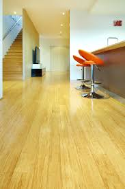 Bamboo Flooring In Kitchen Pros And Cons Bamboo Flooring Green Alternatives To Timber Floors Stonewood