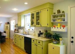 Kitchen Cabinets Designs Photos by Green Kitchen Cabinets Style Rberrylaw Ideas For Paint Green