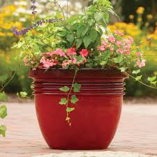 Succulents Pots For Sale by Ceramic Planters Large Gardens And Landscapings Decoration