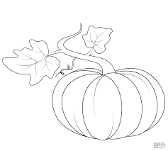 pumpkins coloring pages free coloring pages