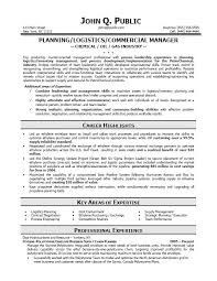 CIO Sample Resume  Chief Information Officer Resume  IT resume     Executive Resume Tips  Ceo Resume  Templates Samples  Resume Templates  Template      Job Search Recruiting Personal  Professional Resume Template