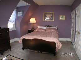 Lavender Rugs For Girls Bedrooms Bedroom Impressive Images Of Blue Boy Bedroom For Your Great Sons