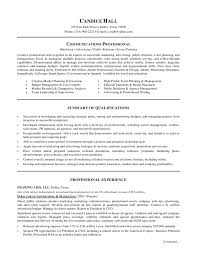 Professional Objectives For Resume  human resources director