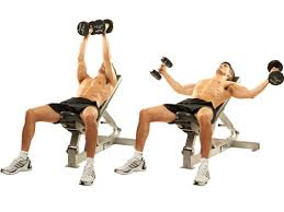 incline bench flyes